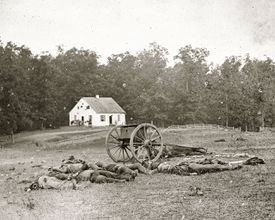 Casualties near the Dunker Church, Battle of Antietam