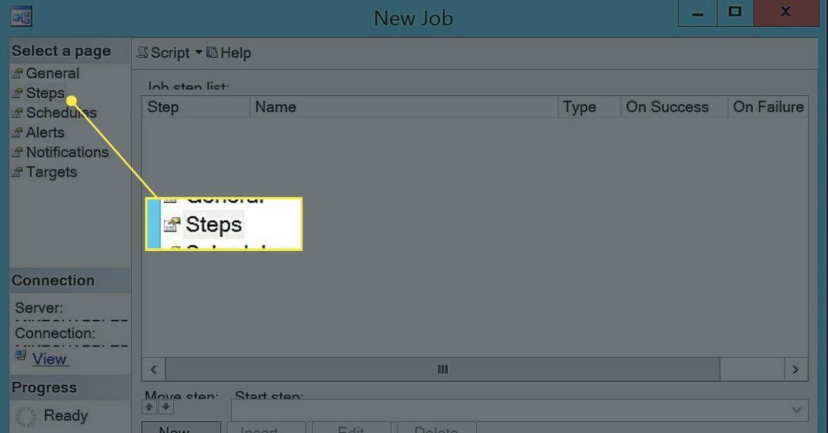 Job Steps Window