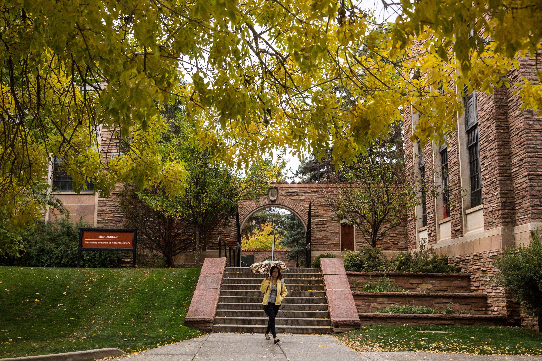 Colorado boulder admissions essay