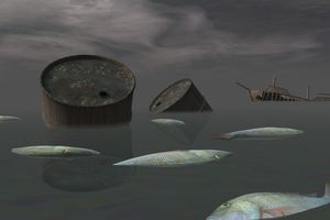 Oil tanks and dead fish
