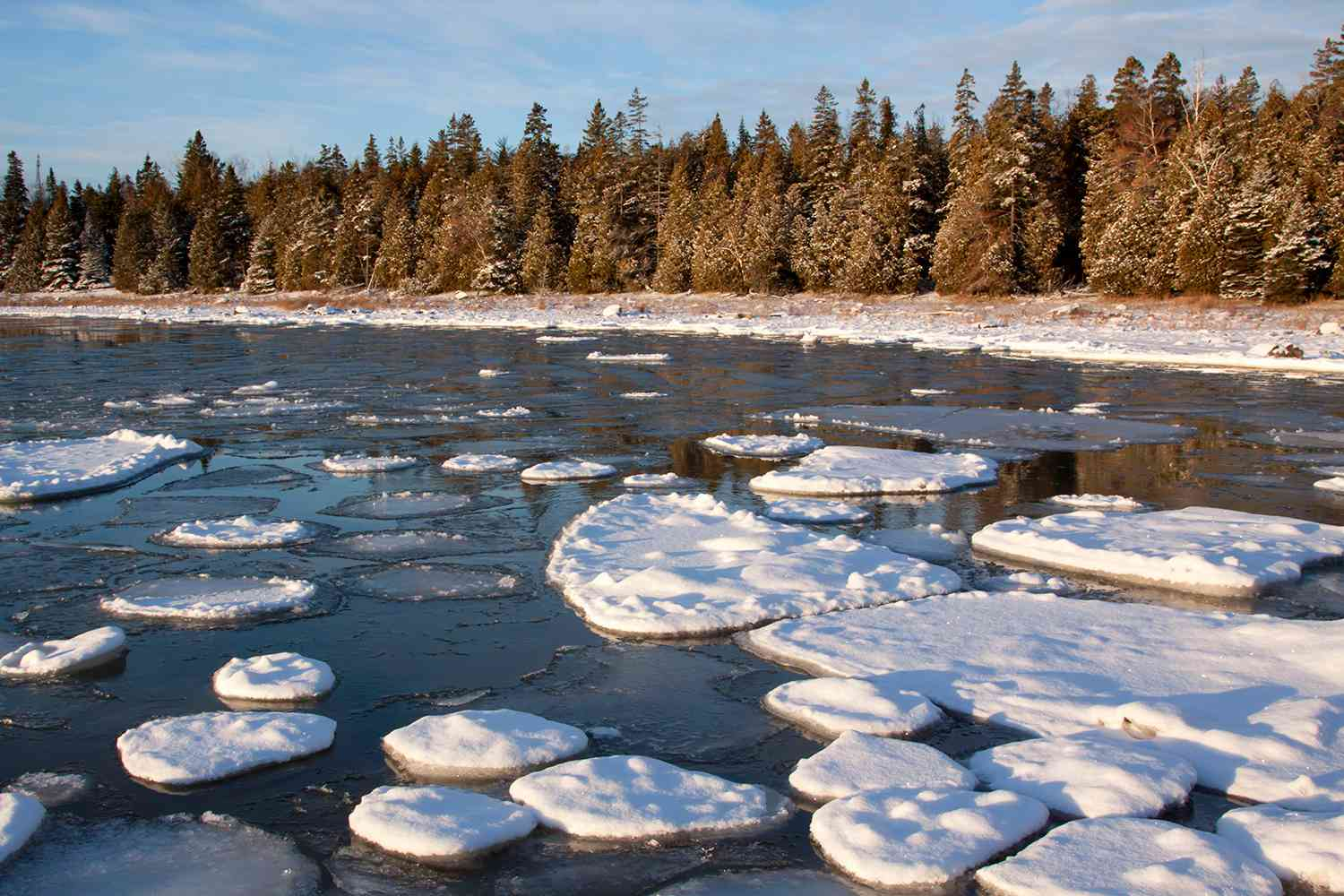 Floating ice pieces covered with snow along forested Lake Huron shore, Detour, Michigan