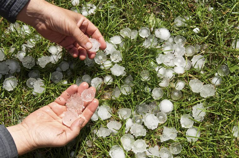 Image result for hails