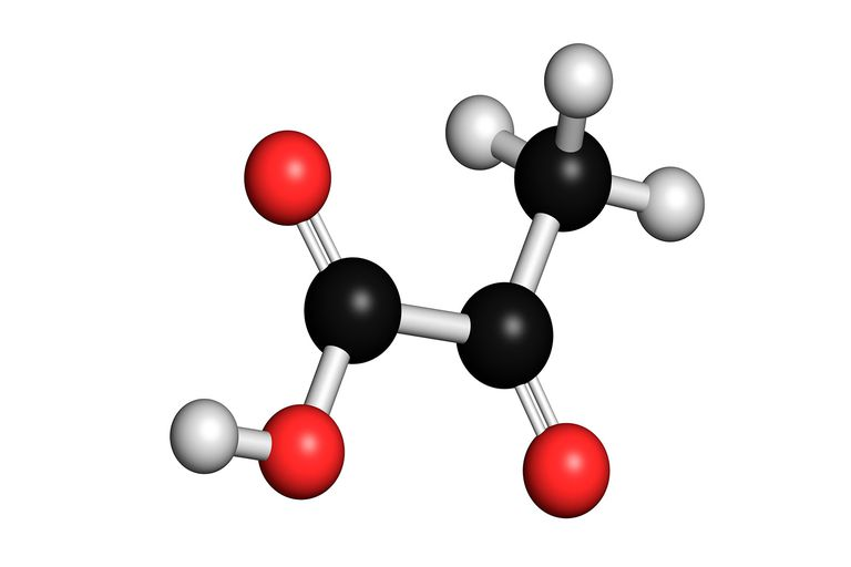 Pyruvate Facts and Oxidation