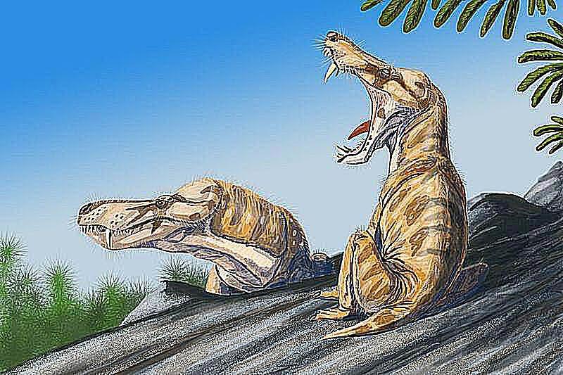 pristerognathus