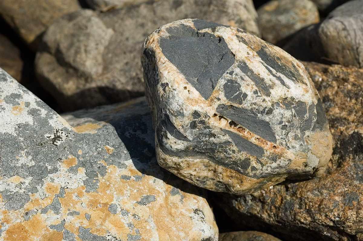Close up of breccia rock in the sunshine.