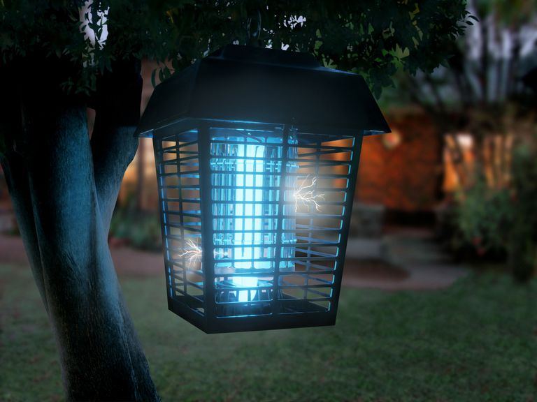 Bug zapper light.