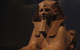 Sphinx of Hatshepsut in a museum with dramatic lighting.
