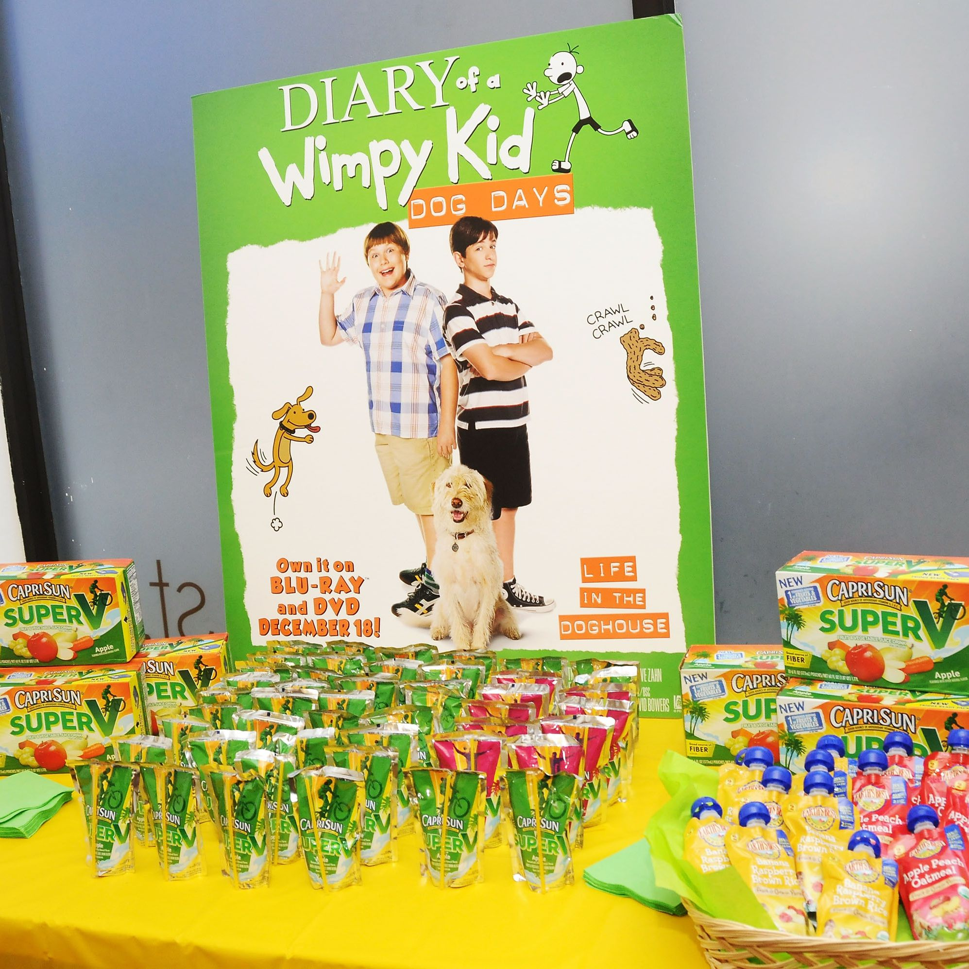 Book Review Diary Of A Wimpy Kid Dog Days