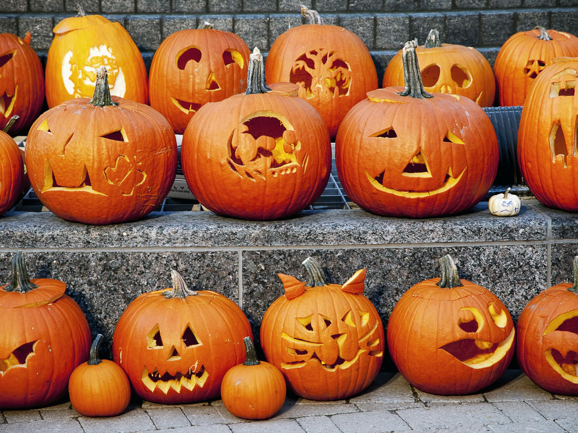 How To Preserve A Carved Halloween Jack O Lantern