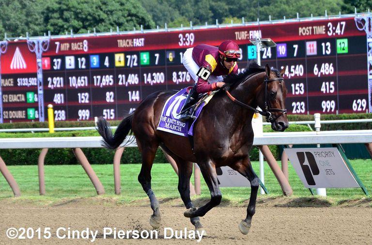 Racing horse and jockey behind toteboard