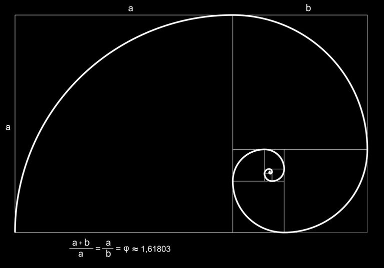 golden ratio in action
