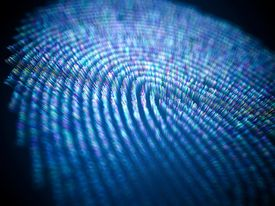 Conceptual illustration of data and personal information in a fingerprint.