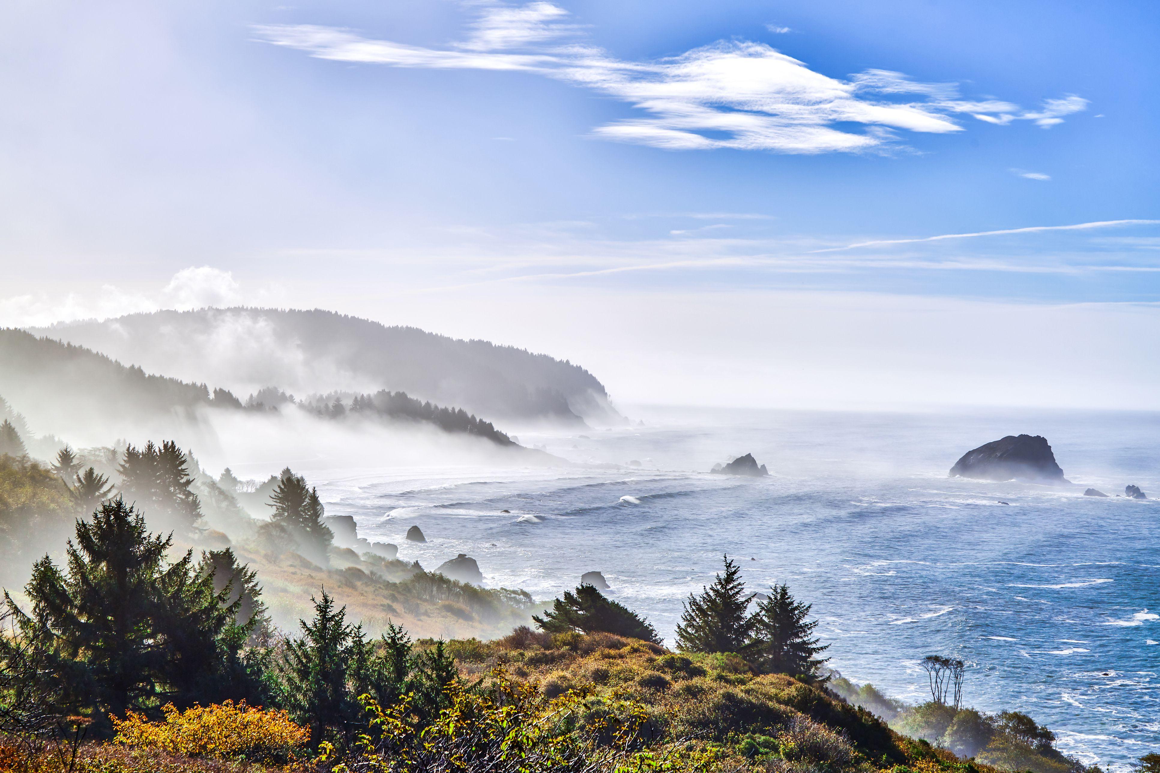 California Coastal road near Redwood National Park.