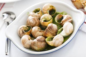 Escargots in butter in a white dish