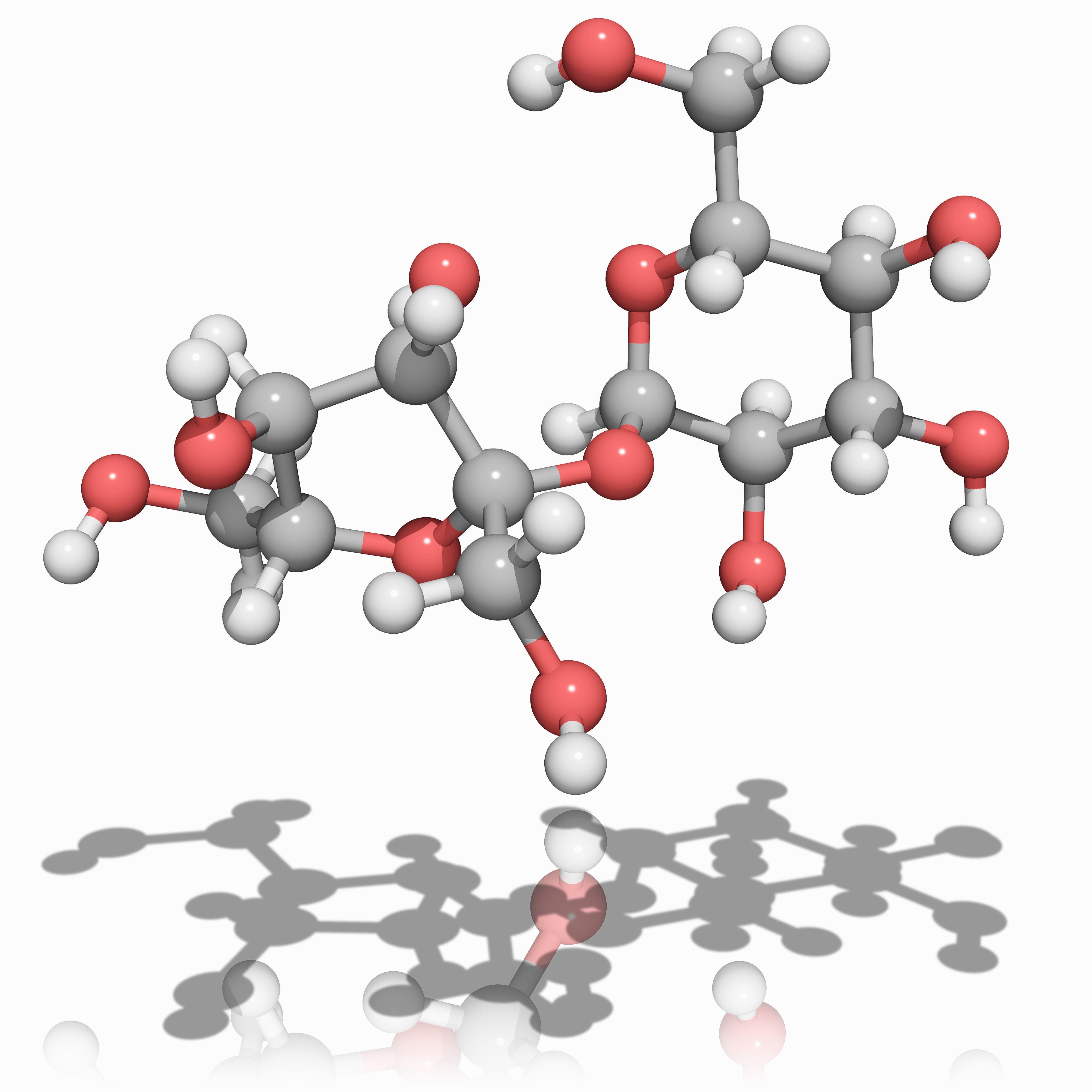 Was ist eine Saccharose in der Chemie?