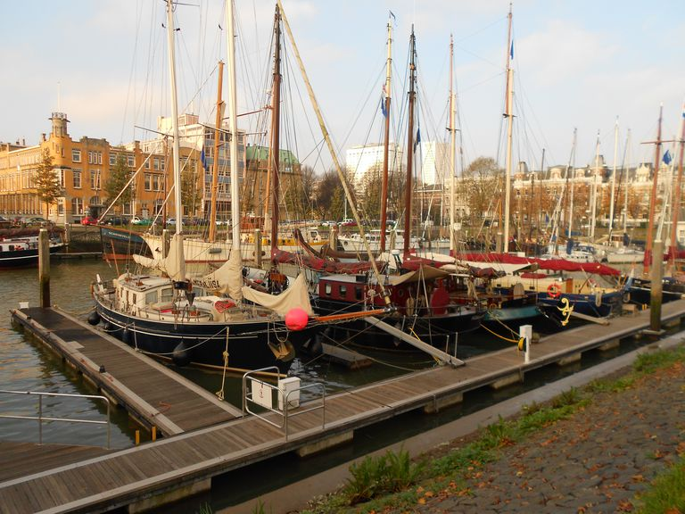Rotterdam-Yachts.JPG