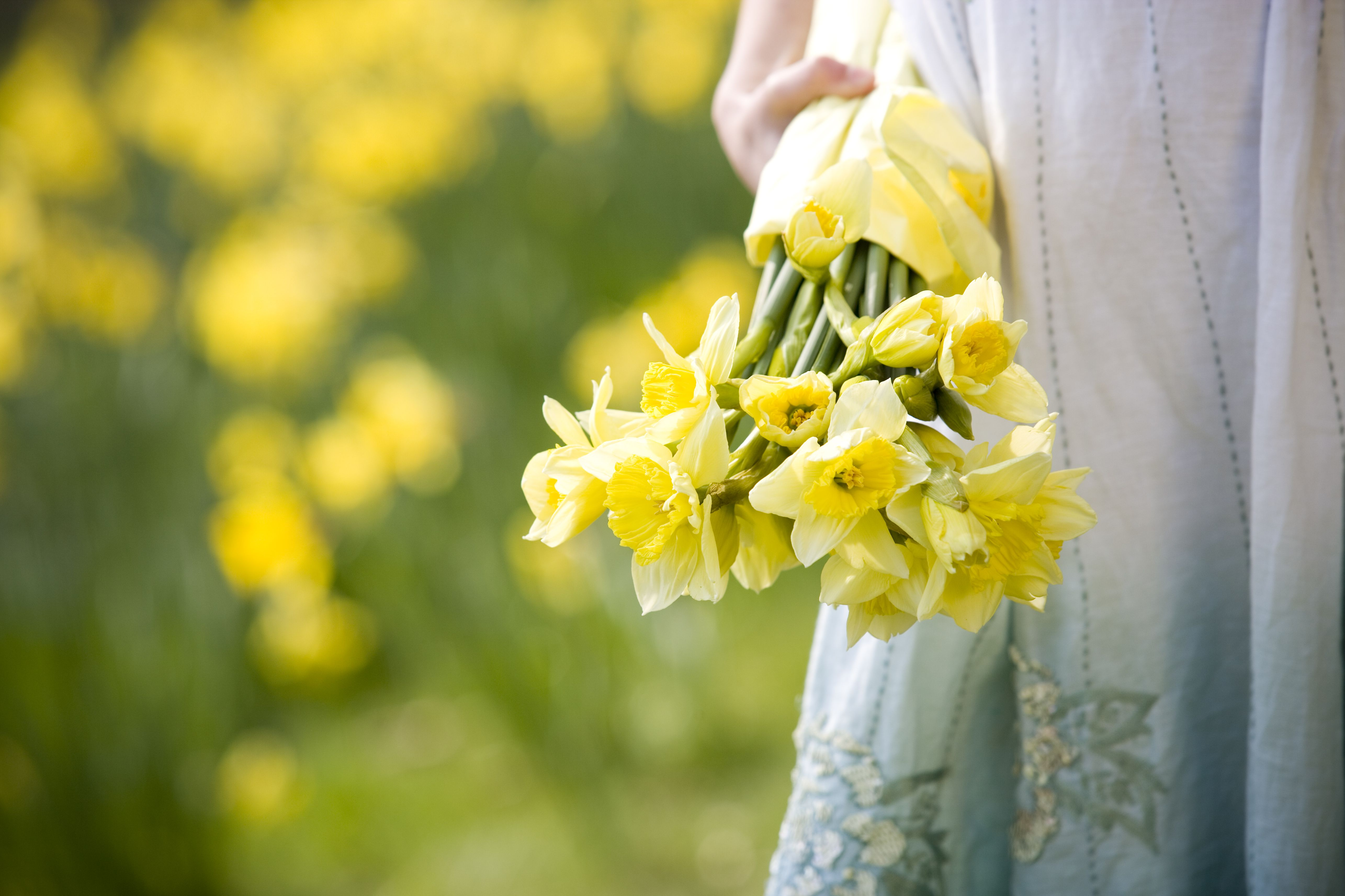 A young girl holding a bunch of daffodils