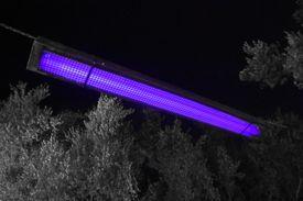 Ultraviolet light is invisible, but black lights or UV-lamps also emit some visible violet light.