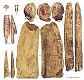 Bone and Ivory Artifacts from the Kostenki Site