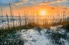 sunrise seen from white sandy beach of Cumberland Island National Seashore's undisturbed wilderness in winter