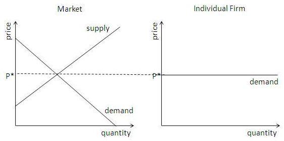 Elastic Demand Curve