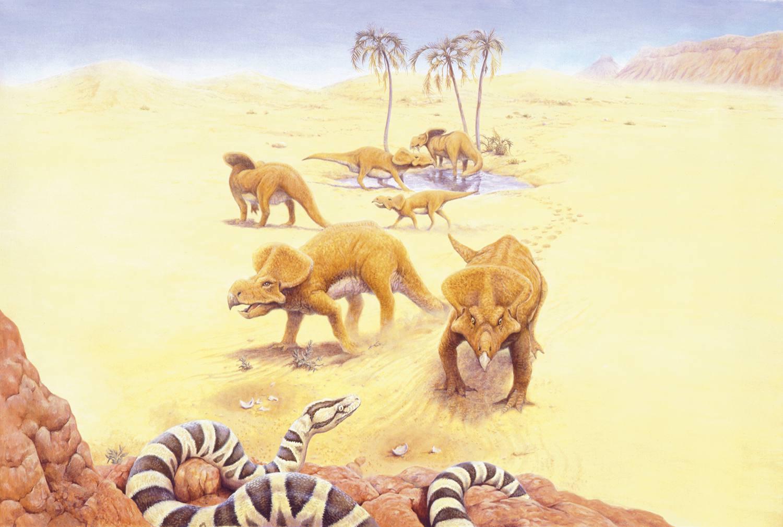 Herd of Protoceratops