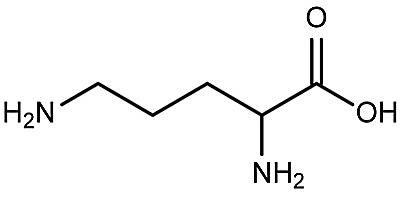 Esta es la estructura química de la ornitina.