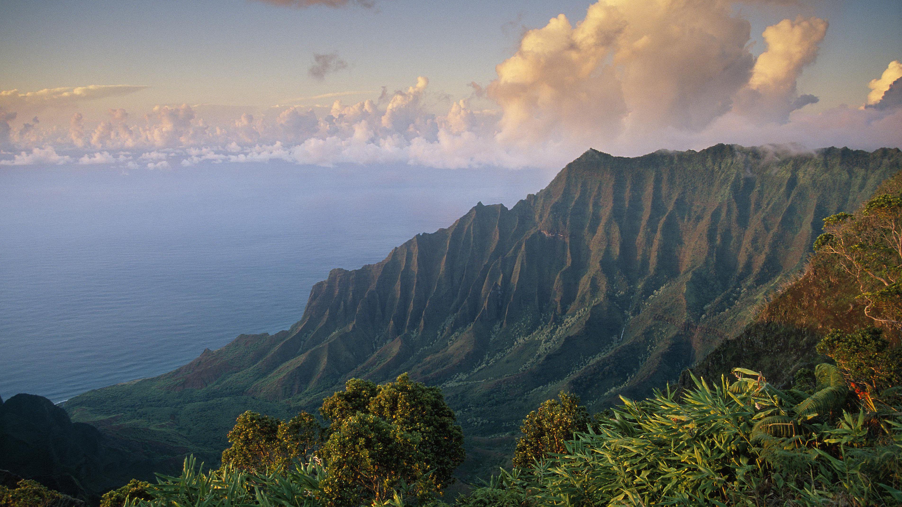 Hawaii Landscape