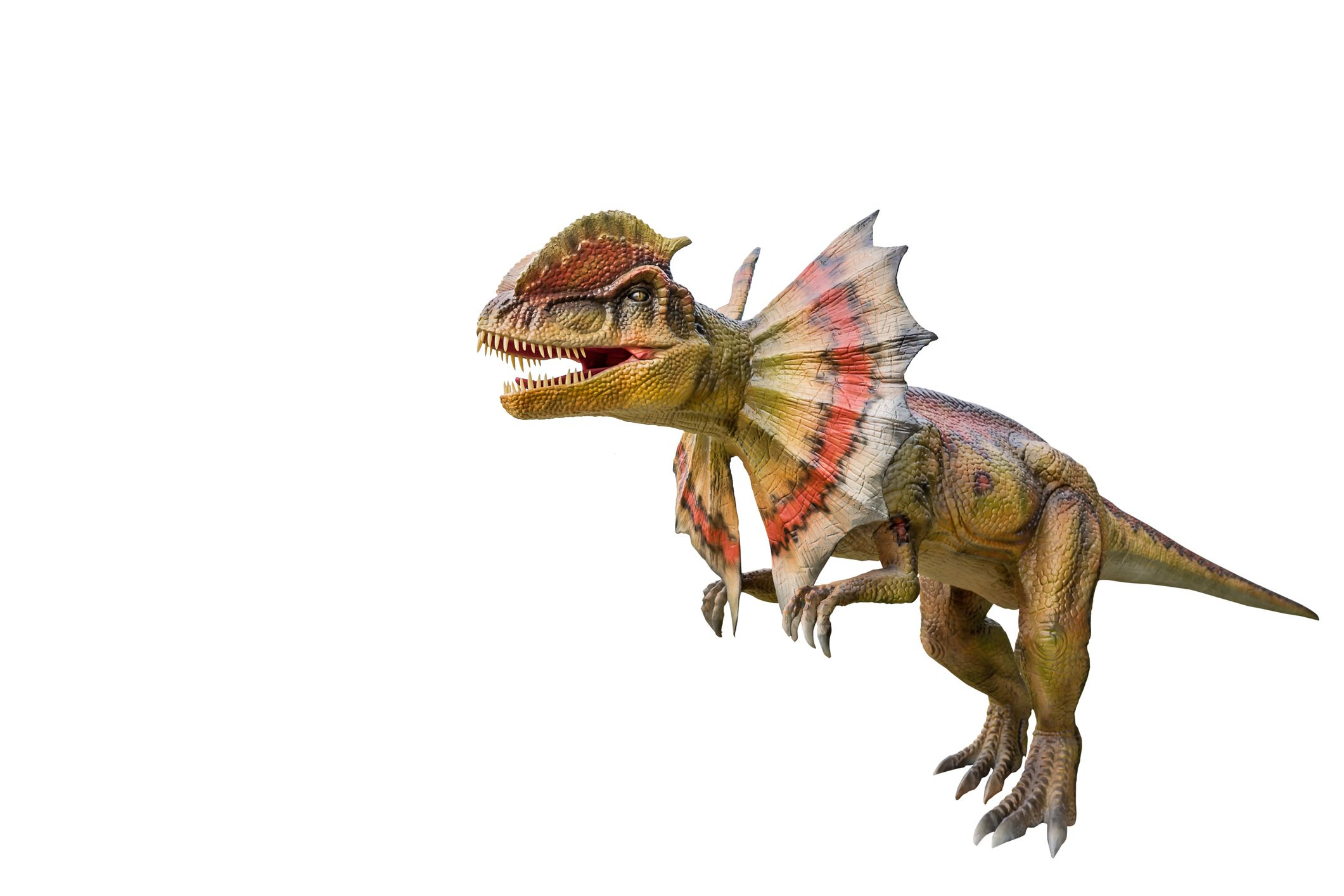 rendering of dilophosaurus with crest on white background
