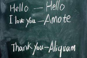 Quick latin translations on a chalkboard