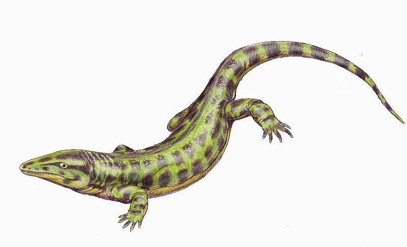 solenodonsaurus