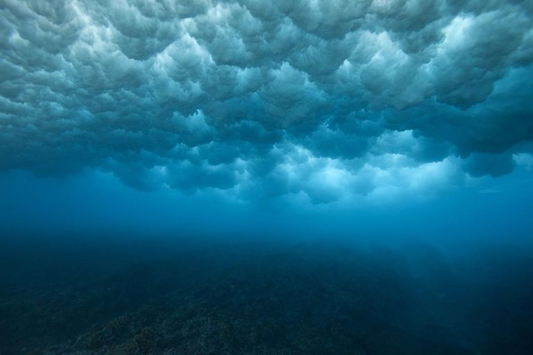 View of wave breaking from underwater.