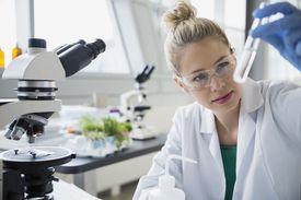 A scientist examining liquid in test tube.