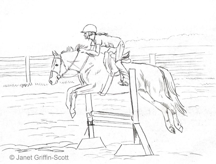 Outline Drawing Of Horse And Rider Showjumping