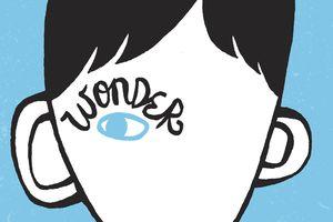 Wonder by R.J. Palacio, middle grade book cover