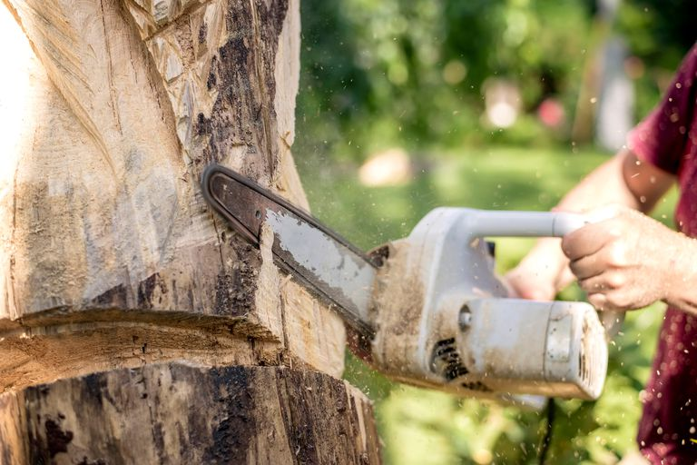 Wood carver uses a chainsaw to sculpt a tree trunk