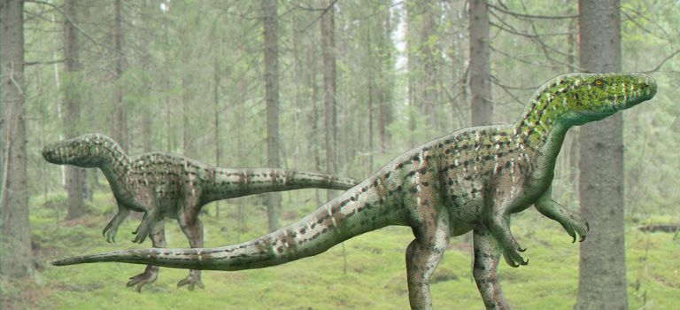 Artist rendering of Poekilopleuron dinosaurs in the jungle.