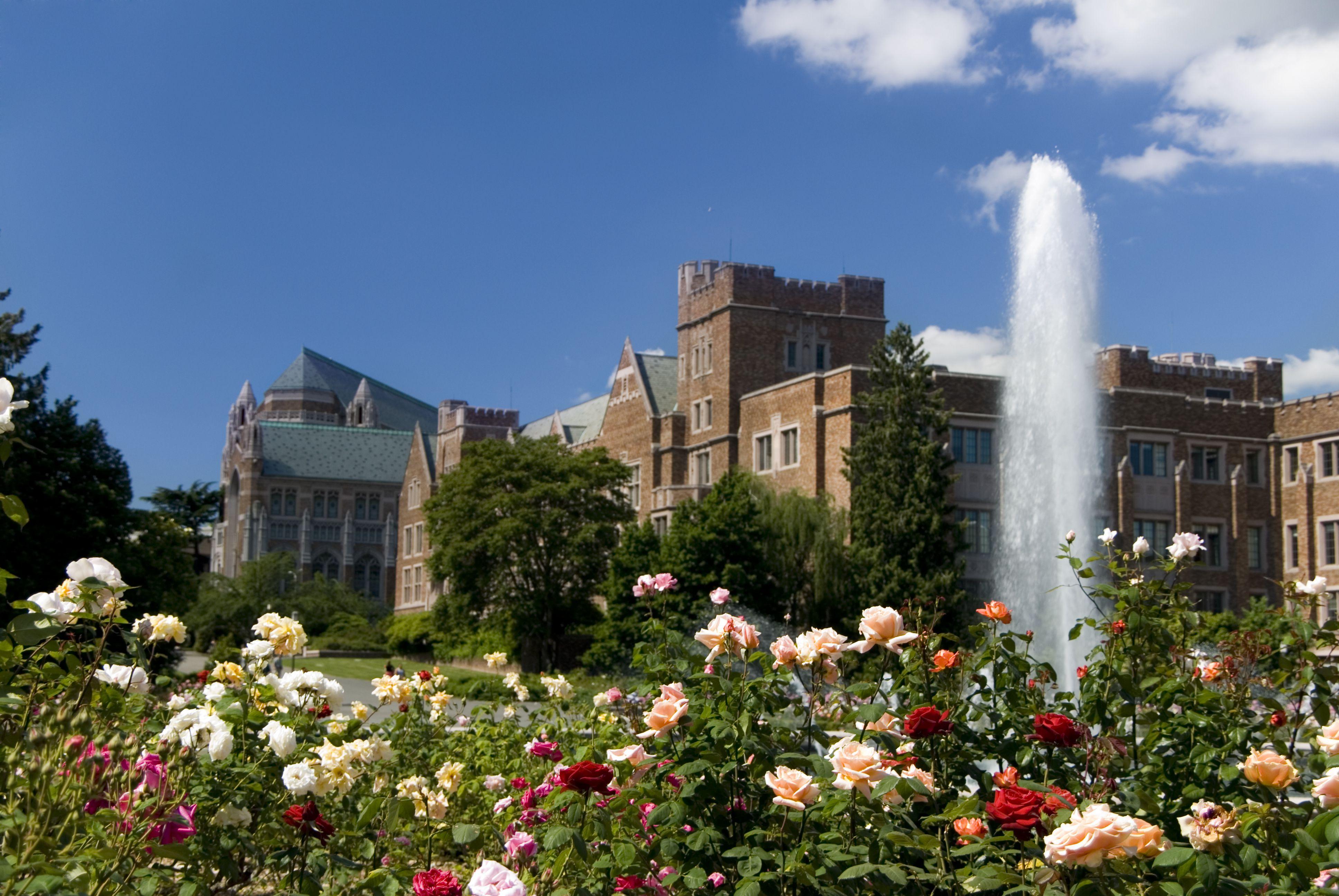 University fountain