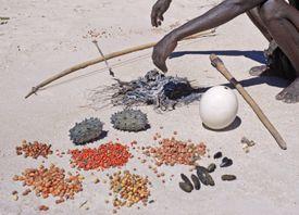 Tool Kit and Food of San Hunter-Gatherer in Etosha National Park