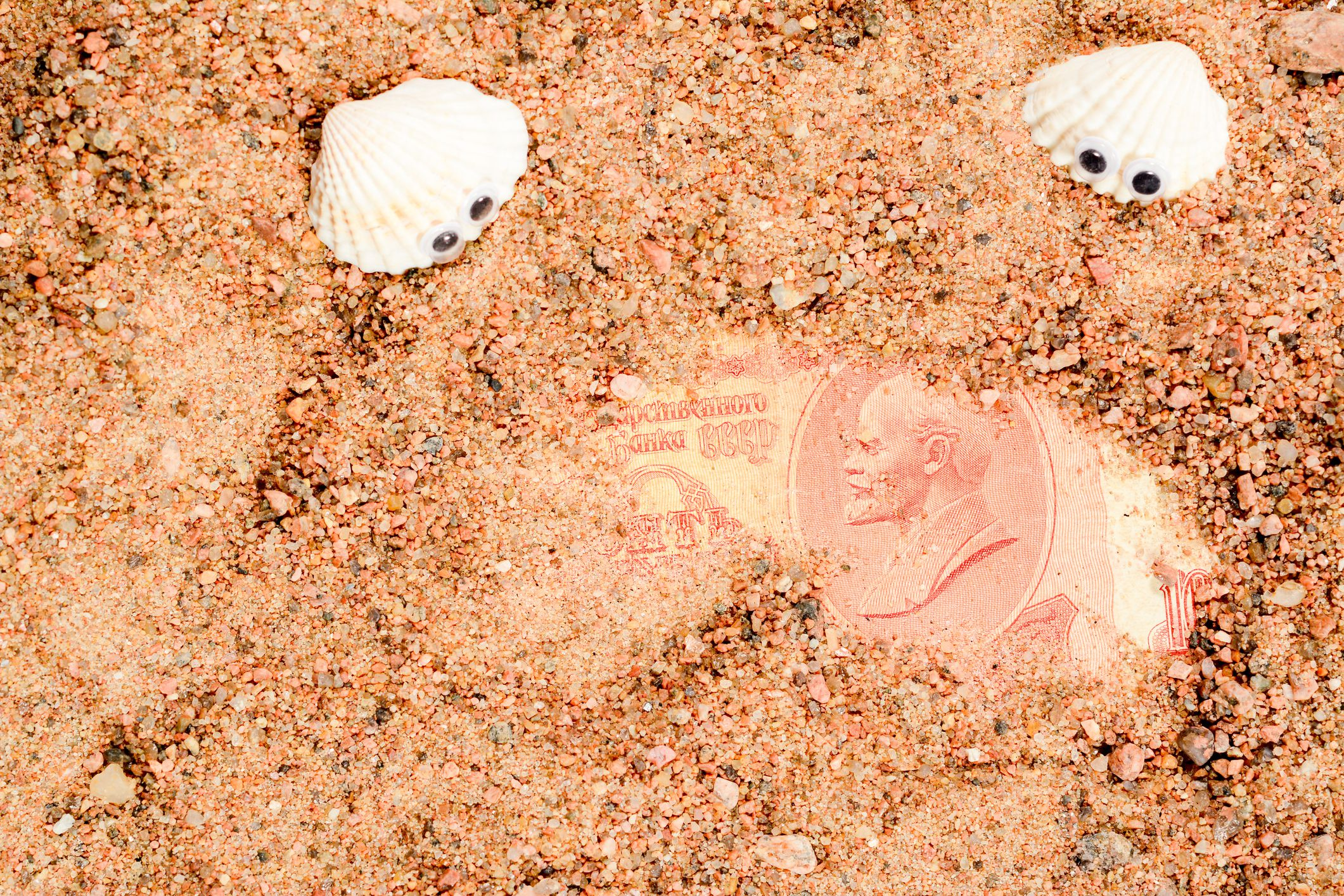 Two sea shells with googly eyes, lie on the sand and look at an old Soviet banknote. Ten rubles USSR with Lenin portrait close-up.