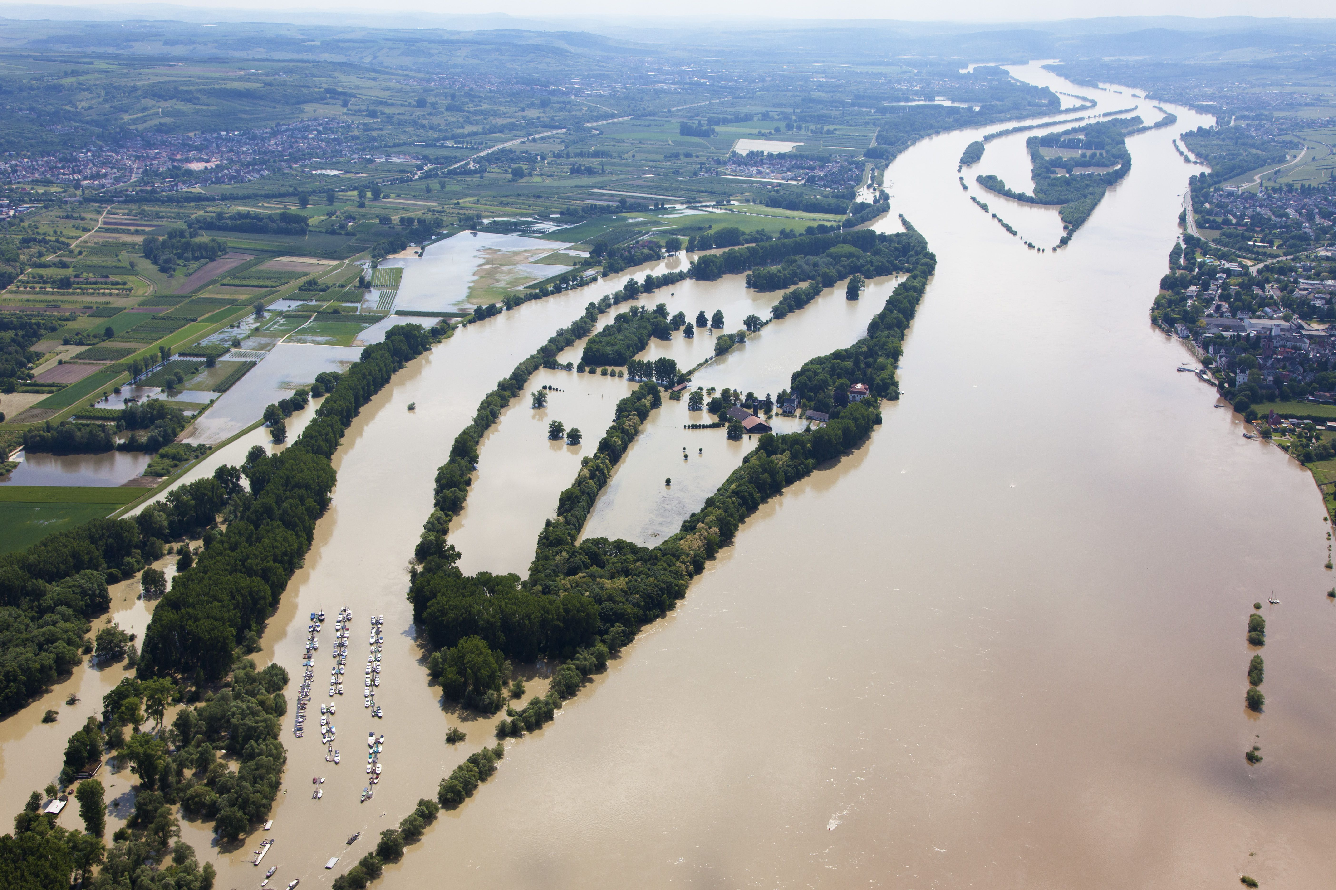 Germany, Hesse, Eltville, Flooding of River Rhine Island Koenigskling Aue, aerial photo