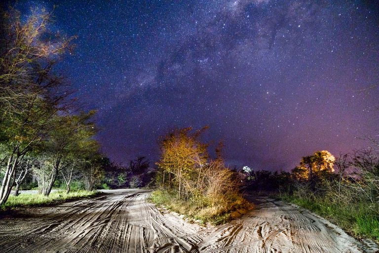 Night sky and the Milky Way in Botswana the Southern Hemisphere