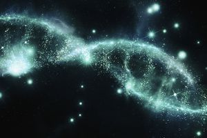 Take this quiz to see how much you know about DNA biochemistry.