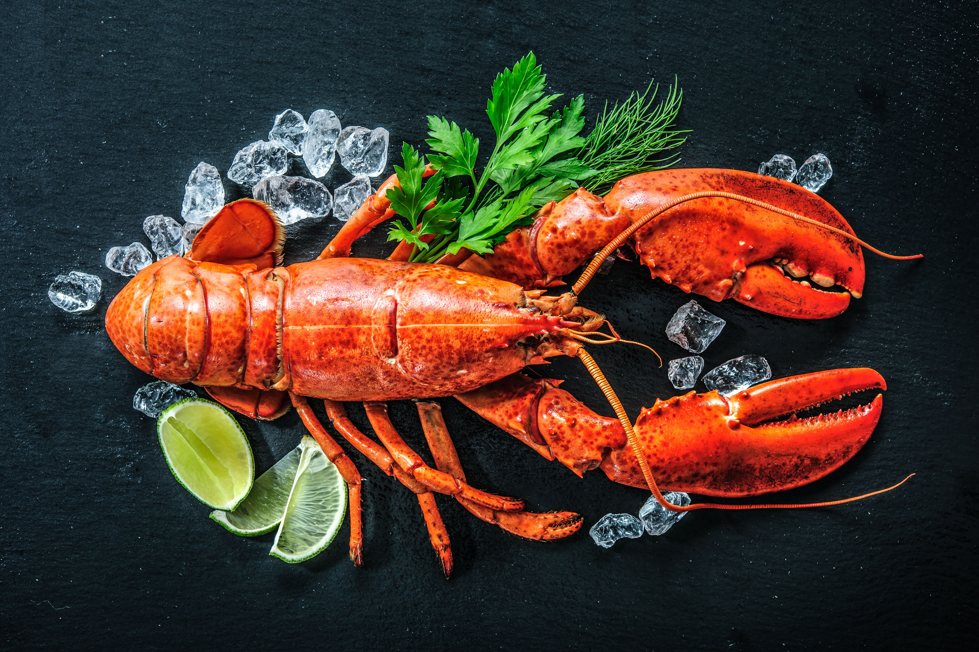 Boiling a live lobster isn't the most human way to kill it.
