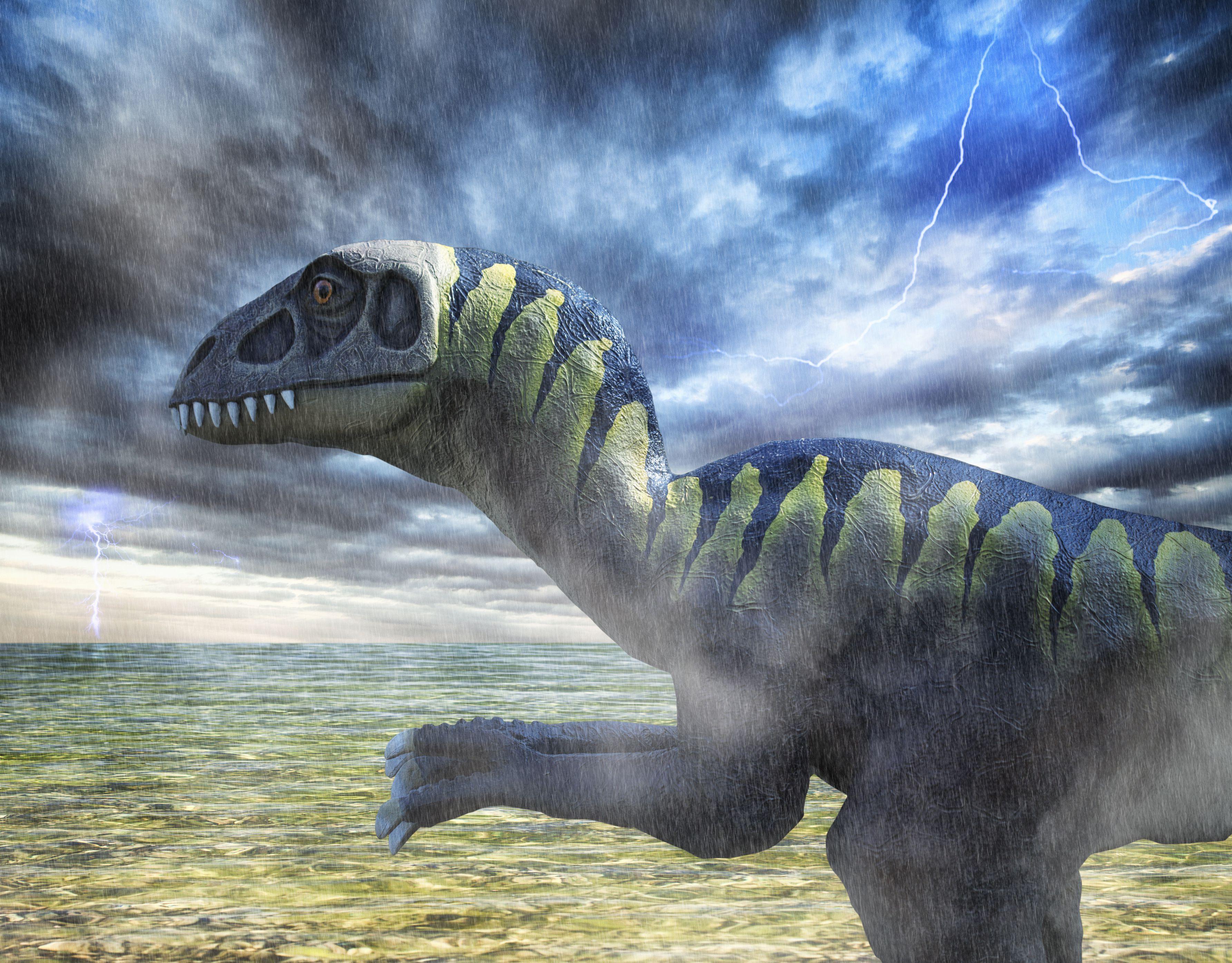 Figure of Troodon