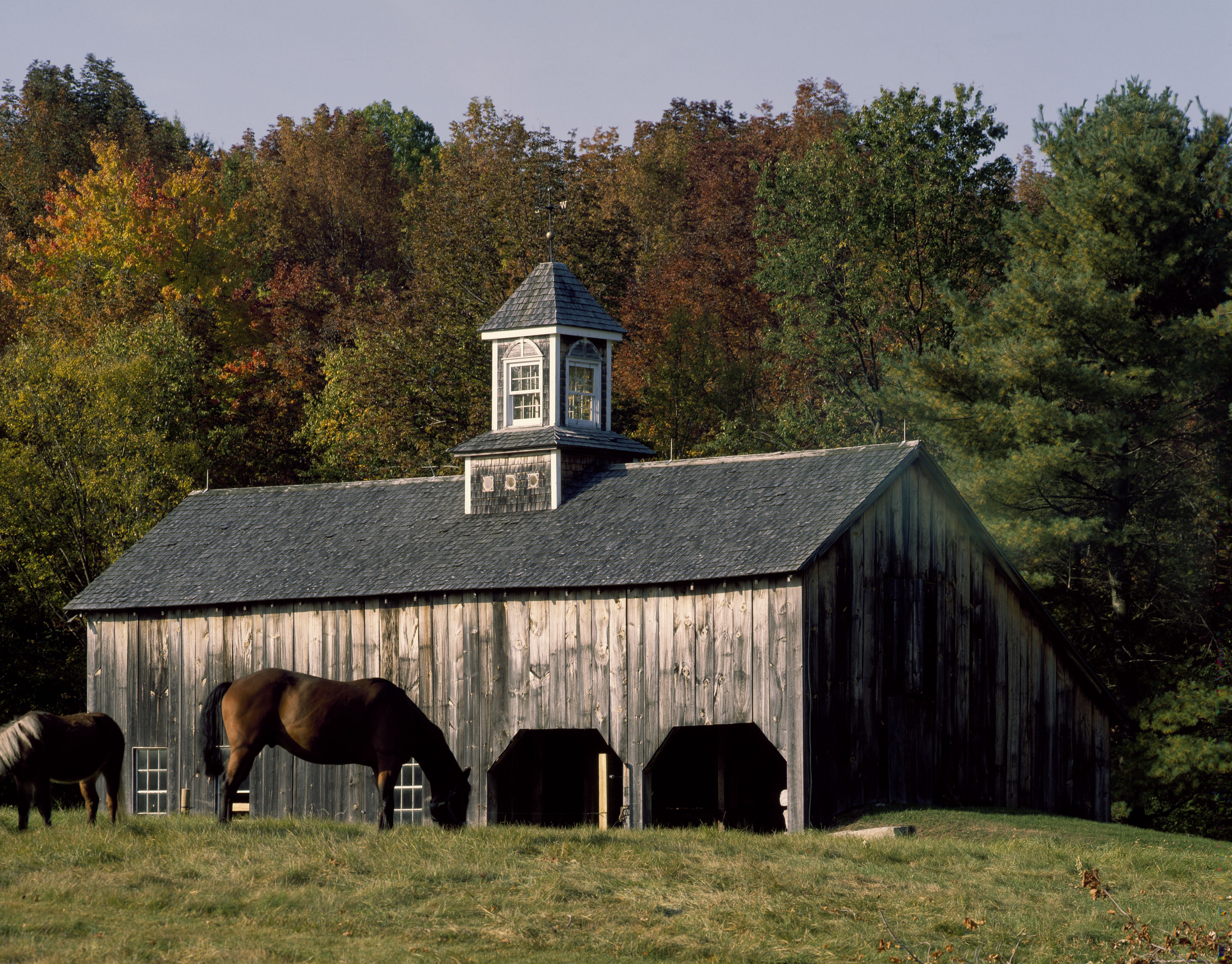 Horse-farm barn with cupola, New England