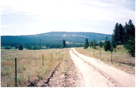 country road leading to hills