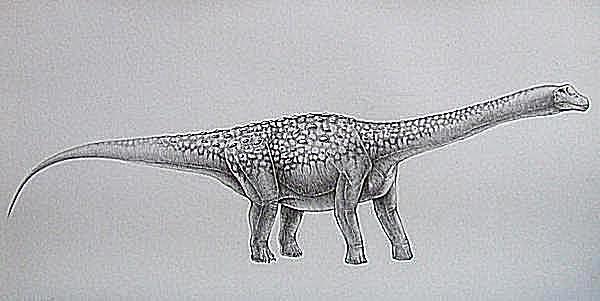 bruhathkayosaurus