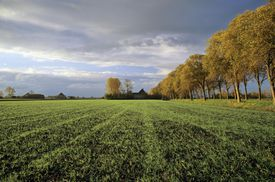 prosperous farm land, meaning of surname Hoover