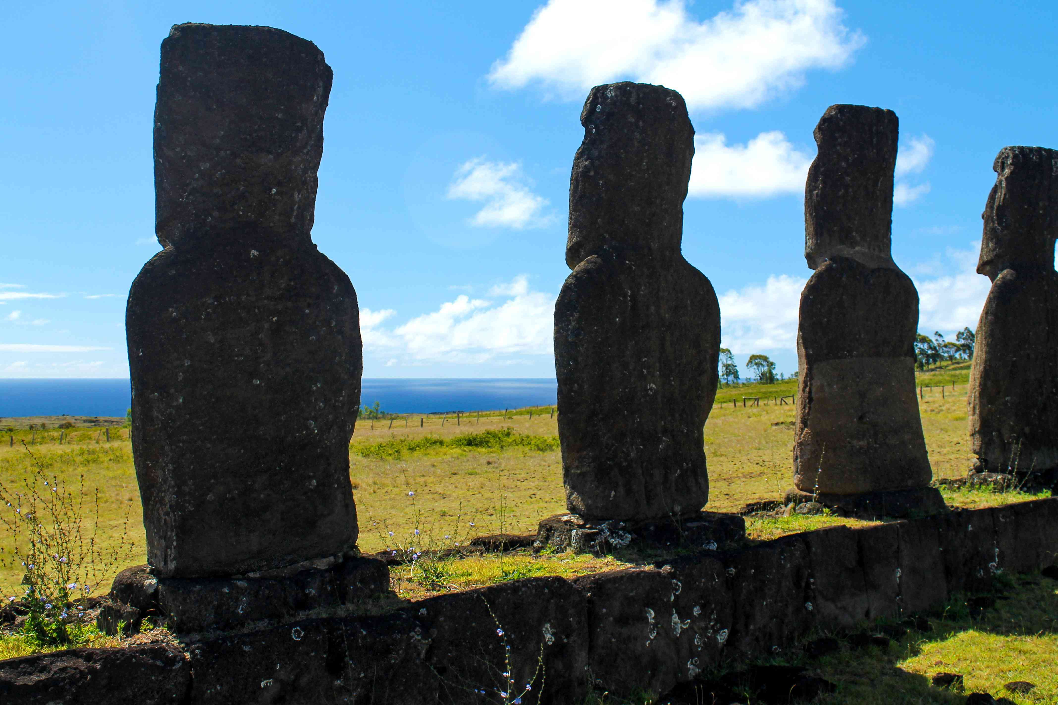 The smooth, weather-worn backs of the moai at Ahu Akivi